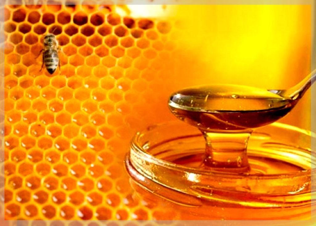 Как правильно хранить мёд в домашних условиях